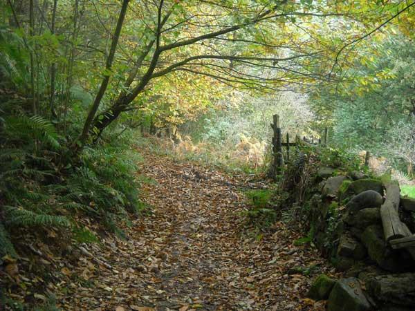 turismo rural Asturias