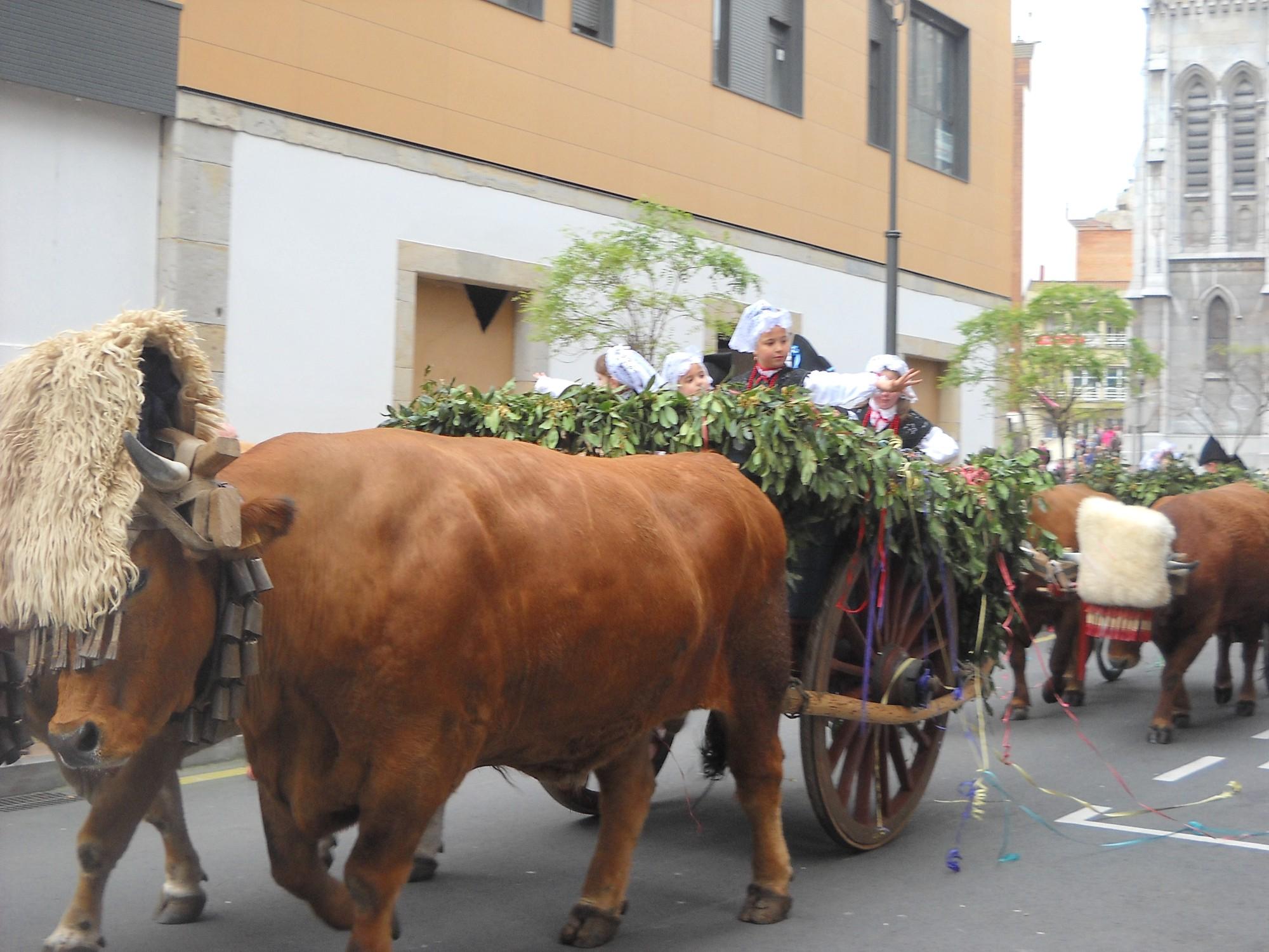fotos Fiestas