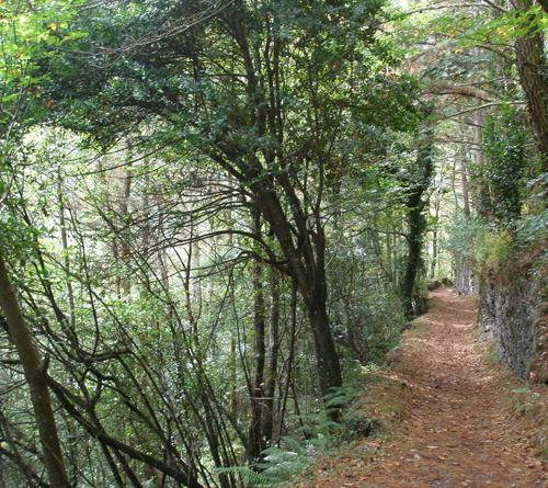 Ruta del Agua de Taramundi