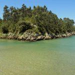 Playa de Guadamia