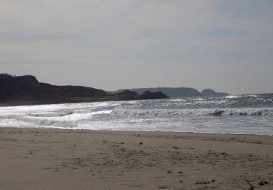 Playa de El Espartal